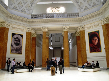 Girodivite national geographic uno sguardo sul mondo da for Mostra palazzo delle esposizioni
